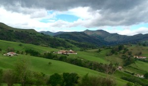 4. Fields Leaving Pamplona